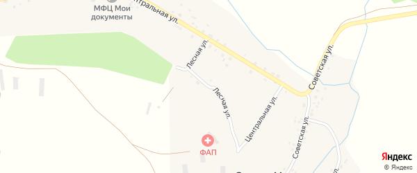 Лесная улица на карте села Семено-Макарово с номерами домов