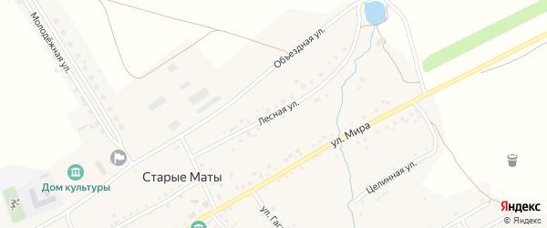 Лесная улица на карте села Старые Маты Башкортостана с номерами домов
