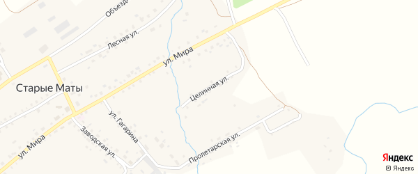 Целинная улица на карте села Старые Маты Башкортостана с номерами домов