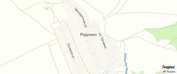Ленинградская улица на карте деревни Родники Башкортостана с номерами домов