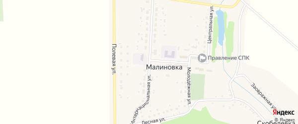 Интернациональная улица на карте деревни Малиновки Башкортостана с номерами домов