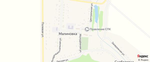 Школьная улица на карте деревни Малиновки с номерами домов
