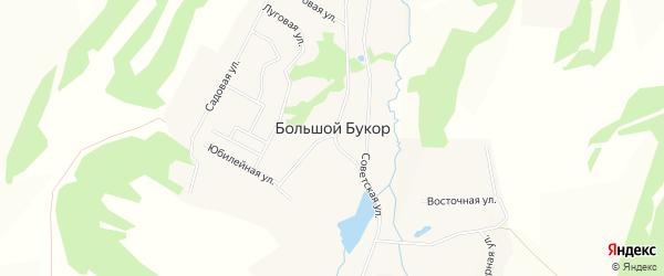 Карта села Большого Букор города Чайковского в Пермском крае с улицами и номерами домов