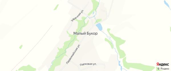Карта деревни Малого Букор города Чайковского в Пермском крае с улицами и номерами домов