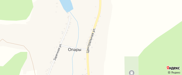 Центральная улица на карте деревни Опары с номерами домов