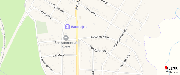 Рябиновая улица на карте села Амзи с номерами домов
