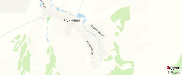 Карта деревни Лукинцы города Чайковского в Пермском крае с улицами и номерами домов
