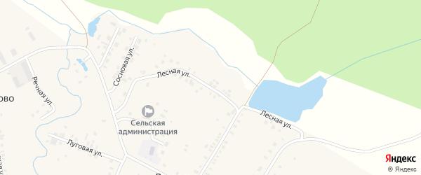 Лесная улица на карте деревни Раздолья с номерами домов