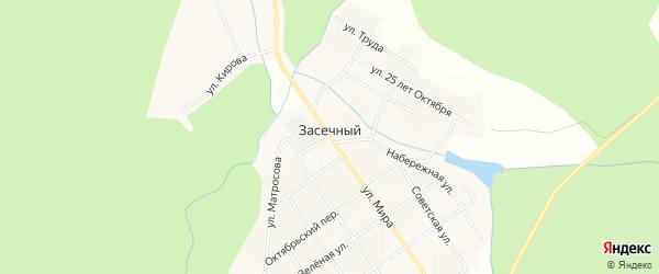 Карта деревни Засечного города Чайковского в Пермском крае с улицами и номерами домов