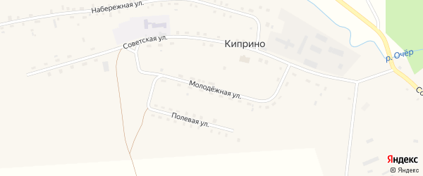 Молодежная улица на карте деревни Киприно Пермского края с номерами домов