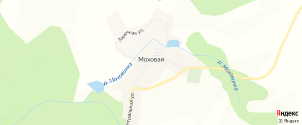 Карта Моховой деревни города Чайковского в Пермском крае с улицами и номерами домов