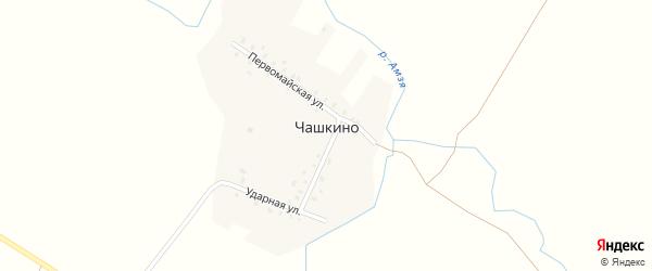 Первомайская улица на карте деревни Чашкино с номерами домов