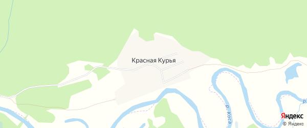 Карта поселка Красной Курьи в Пермском крае с улицами и номерами домов