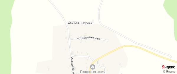 Улица Борчанинова на карте села Зюкая Пермского края с номерами домов
