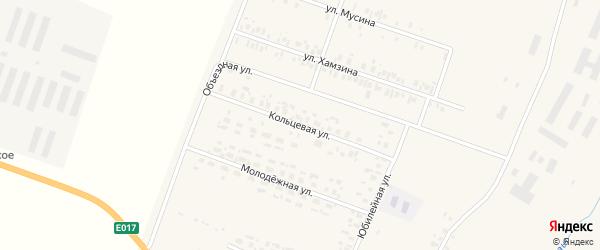 Кольцевая улица на карте села Асяново с номерами домов