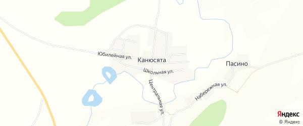 Карта деревни Канюсяты в Пермском крае с улицами и номерами домов