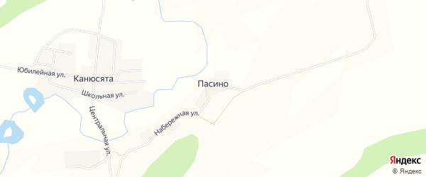 Карта деревни Пасино в Пермском крае с улицами и номерами домов