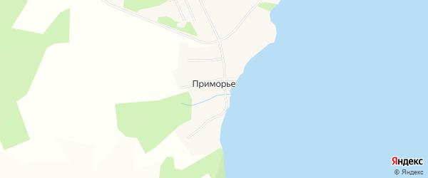 Карта деревни Приморья в Пермском крае с улицами и номерами домов