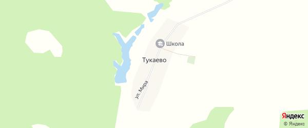 Карта деревни Тукаево в Башкортостане с улицами и номерами домов