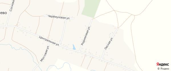 Родниковая улица на карте села Калмашево с номерами домов