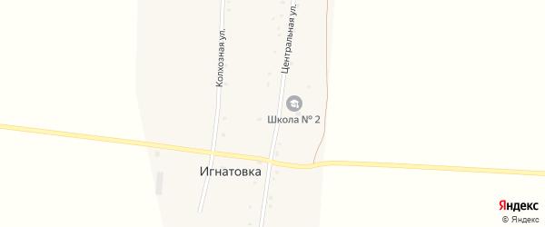 Центральная улица на карте деревни Игнатовки с номерами домов