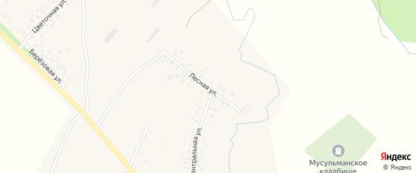 Лесная улица на карте поселка Чишмы Башкортостана с номерами домов