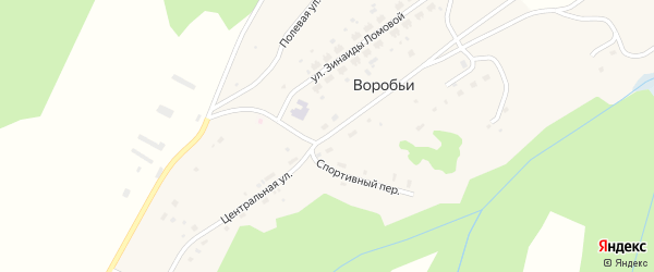 Центральная улица на карте села Воробьи Пермского края с номерами домов