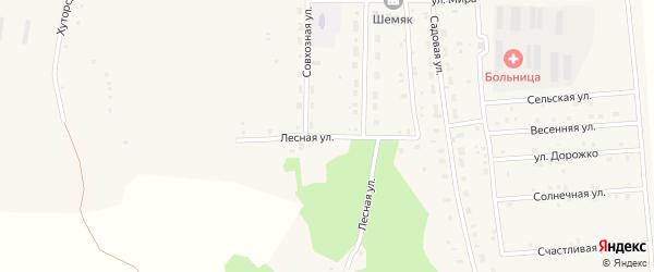 Лесная улица на карте села Октябрьского с номерами домов