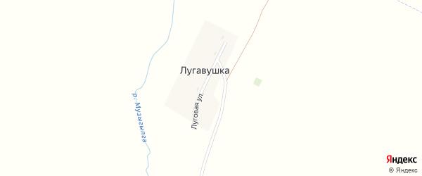 Луговая улица на карте деревни Лугавушки Башкортостана с номерами домов