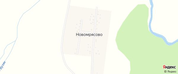 Молодежная улица на карте деревни Новомрясово с номерами домов