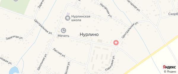 Заречный переулок на карте села Нурлино Башкортостана с номерами домов