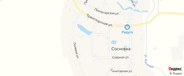 Полевая улица на карте деревни Сосновки с номерами домов