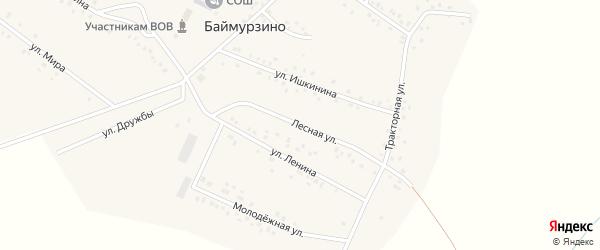 Лесная улица на карте деревни Баймурзино с номерами домов
