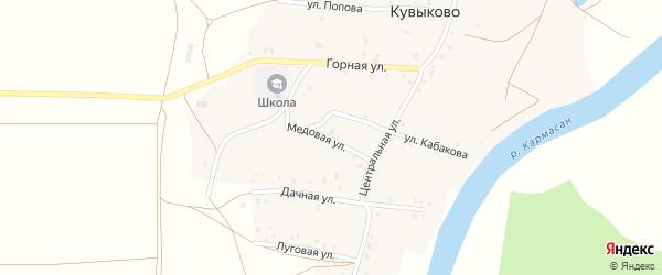 Медовая улица на карте села Кувыково Башкортостана с номерами домов