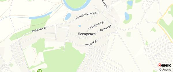 Карта деревни Лекаревки в Башкортостане с улицами и номерами домов