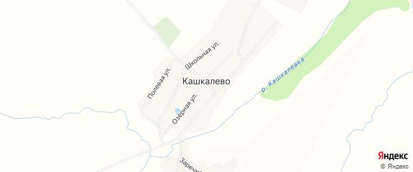 Карта деревни Кашкалево в Башкортостане с улицами и номерами домов