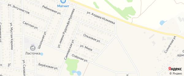 Ольховая улица на карте села Жуково с номерами домов