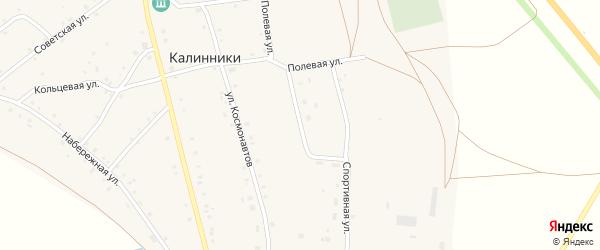 Молодежная улица на карте села Калинники с номерами домов