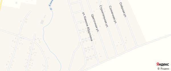 Ягодный переулок на карте села Старых Камышлы Башкортостана с номерами домов