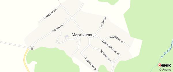 Центральная улица на карте деревни Мартыновцы Пермского края с номерами домов