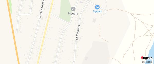 Улица Салавата на карте села Зиргана с номерами домов