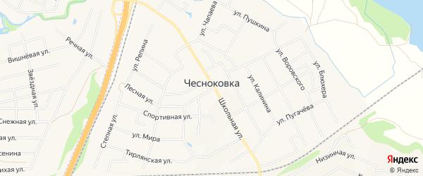 Карта села Чесноковки в Башкортостане с улицами и номерами домов
