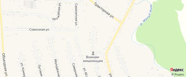 Пионерская улица на карте села Мишкино с номерами домов