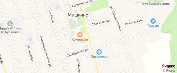 Улица Ленина на карте села Мишкино Башкортостана с номерами домов