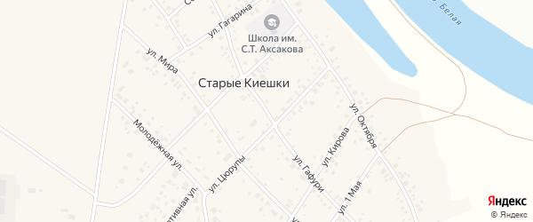 Улица Гафури на карте деревни Старые Киешки с номерами домов