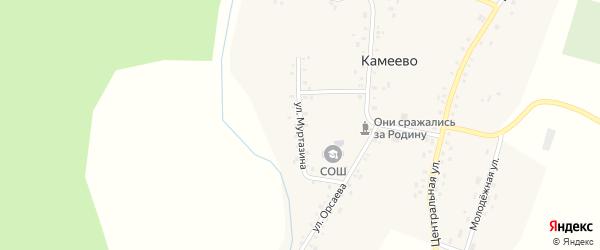 Улица Муртазина на карте села Камеево Башкортостана с номерами домов