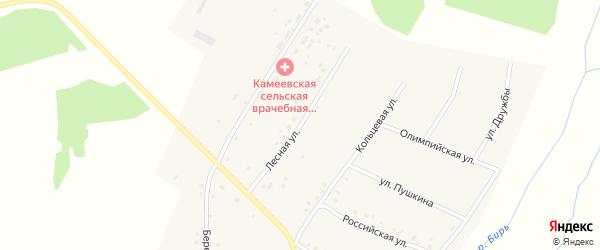 Лесная улица на карте села Камеево Башкортостана с номерами домов
