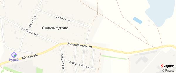 Лесной переулок на карте деревни Сальзигутово с номерами домов