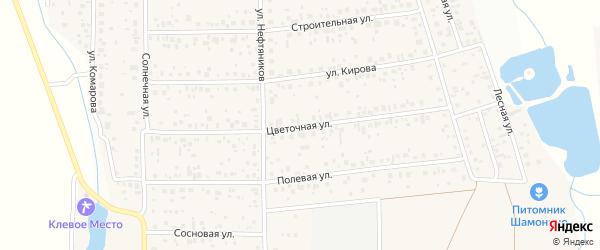 Цветочная улица на карте деревни Шмидтово с номерами домов