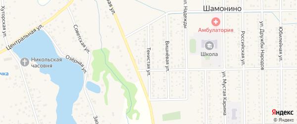Тенистая улица на карте деревни Шамонино Башкортостана с номерами домов